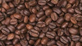 Chicchi di caffè arrostiti video d archivio