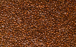 Chicchi di caffè arrostiti Immagini Stock Libere da Diritti
