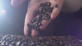 Chicchi di caffè arrostiti aromatici che sono mantenuti una tavola, mani che verificano qualità al rallentatore video d archivio