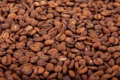 Chicchi di caffè arrostiti fragranti Fotografia Stock