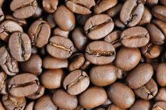Chicchi di caffè arrostiti macro Fotografie Stock Libere da Diritti