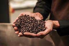 Chicchi di caffè arrostiti in mani Immagine Stock