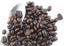 Chicchi di caffè arrostiti su priorità bassa bianca Fotografie Stock Libere da Diritti