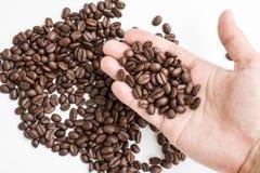 Chicchi di caffè arrostiti sulla mano dell'agricoltore Immagini Stock