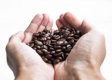 Chicchi di caffè arrostiti tenuta della mano Fotografie Stock Libere da Diritti