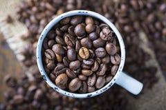Chicchi di caffè arrostiti in una tazza della porcellana Immagine Stock Libera da Diritti
