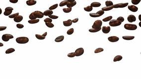 Chicchi di caffè di caduta stock footage