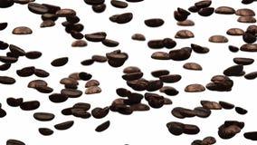 Chicchi di caffè di caduta archivi video