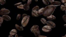 Chicchi di caffè di caduta su un fondo nero video d archivio