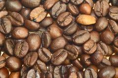 Chicchi di caffè come priorità bassa fotografie stock