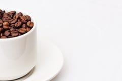 Chicchi di caffè con la tazza di caffè bianca Fotografie Stock