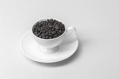 Chicchi di caffè con nella tazza di caffè su fondo bianco fotografie stock