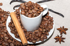 Chicchi di caffè con vaniglia Immagini Stock