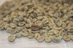 Chicchi di caffè crudi su una base di legno Immagini Stock