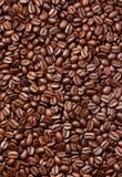 Chicchi di caffè del Brown Fotografia Stock