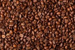 Chicchi di caffè del Brown Fotografie Stock