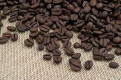 Chicchi di caffè del Brown Immagini Stock