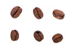 Chicchi di caffè del Brown isolati su priorità bassa bianca Fotografia Stock Libera da Diritti