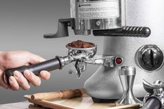 Chicchi di caffè della macinazione di barista sulla macchina Immagine Stock