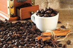 Chicchi di caffè della torrefazione fresca e della macinazione fresca fotografie stock libere da diritti
