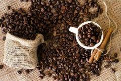 Chicchi di caffè della torrefazione fresca e della macinazione fresca fotografia stock