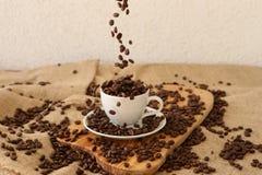 Chicchi di caffè di caduta Fotografia Stock