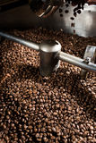 Chicchi di caffè di recente arrostiti Immagini Stock Libere da Diritti