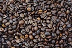 Fondo dei chicchi di caffè Immagine Stock Libera da Diritti