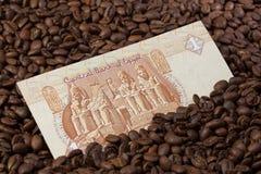 Chicchi di caffè e banconota egiziana Fotografia Stock Libera da Diritti