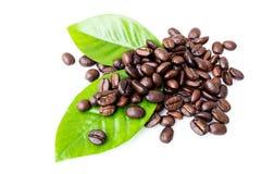 Chicchi di caffè e fogli Fotografia Stock