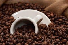 Chicchi di caffè e tazza (1) Fotografia Stock