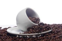 Chicchi di caffè e una tazza bianca Fotografie Stock