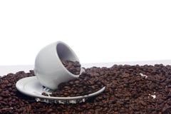 Chicchi di caffè e una tazza bianca Immagini Stock