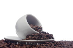 Chicchi di caffè e una tazza bianca Fotografia Stock Libera da Diritti