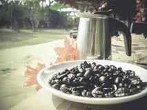 Chicchi di caffè e vaso di mocca Fotografie Stock Libere da Diritti