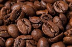 Chicchi di caffè Fine in su Fotografia Stock