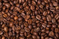 Chicchi di caffè Fine in su Immagini Stock