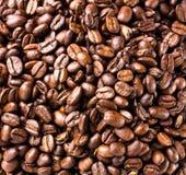 Chicchi di caffè fondo o alta risoluzione di struttura, primo piano Fotografie Stock
