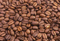 Chicchi di caffè fragranti di Brown Fotografia Stock Libera da Diritti