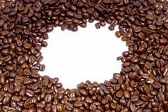 Chicchi di caffè freschi Immagini Stock