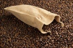 chicchi di caffè freschi Immagine Stock Libera da Diritti