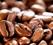 Chicchi di caffè fritti o arrostiti a macroistruzione Immagini Stock