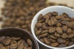 Chicchi di caffè fritti in una tazza Immagini Stock