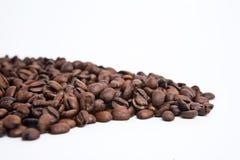 Chicchi di caffè isolati Fotografie Stock