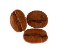 Chicchi di caffè a macroistruzione Immagini Stock