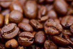 Chicchi di caffè a macroistruzione Fotografie Stock Libere da Diritti