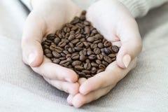 Chicchi di caffè in mani Immagini Stock