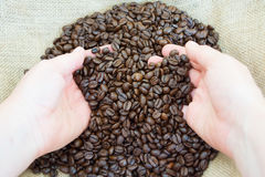 Chicchi di caffè in mani Fotografie Stock