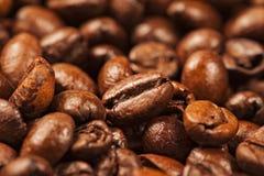 Chicchi di caffè marroni arrostiti multiplo Fotografia Stock