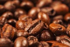 Chicchi di caffè marroni arrostiti multiplo Immagini Stock Libere da Diritti